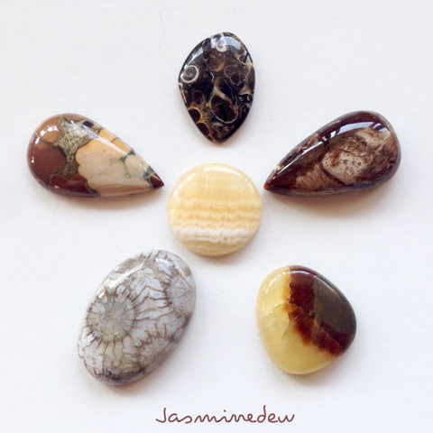 可愛い化石系天然石セット1