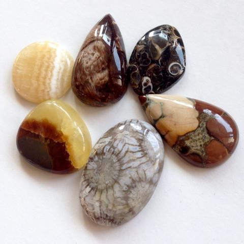 可愛い化石系天然石セット2