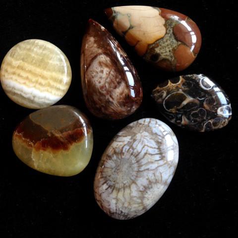 可愛い化石系天然石セット3