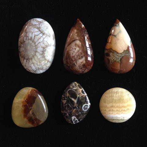 可愛い化石系天然石セット4