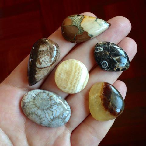 可愛い化石系天然石セット5